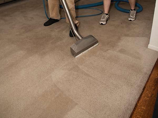 Carpet being cleaned in Colorado Springs