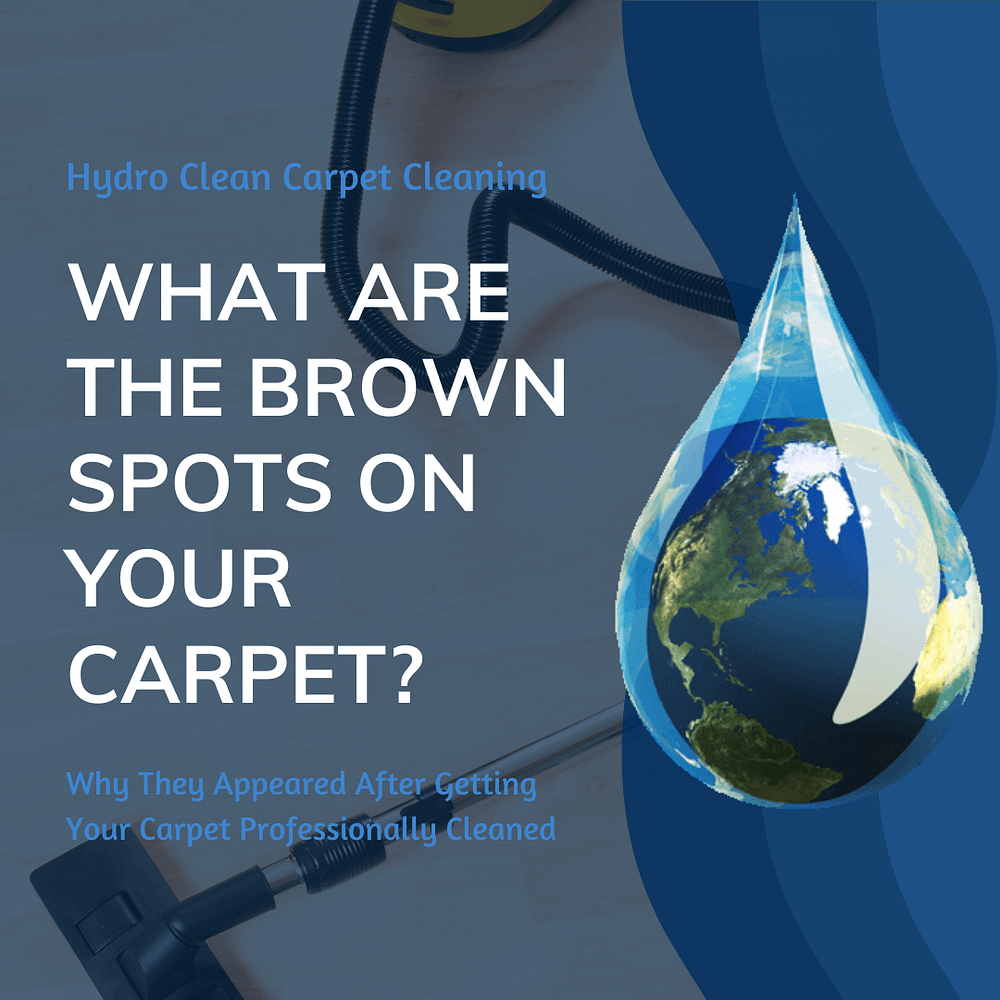 featured image what are the brown spots on your carpet
