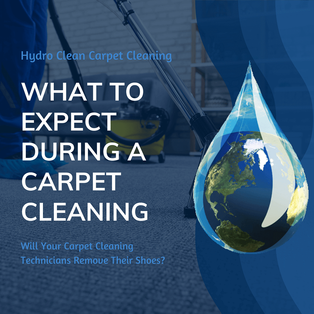 featured image what to expect during a carpet cleaning