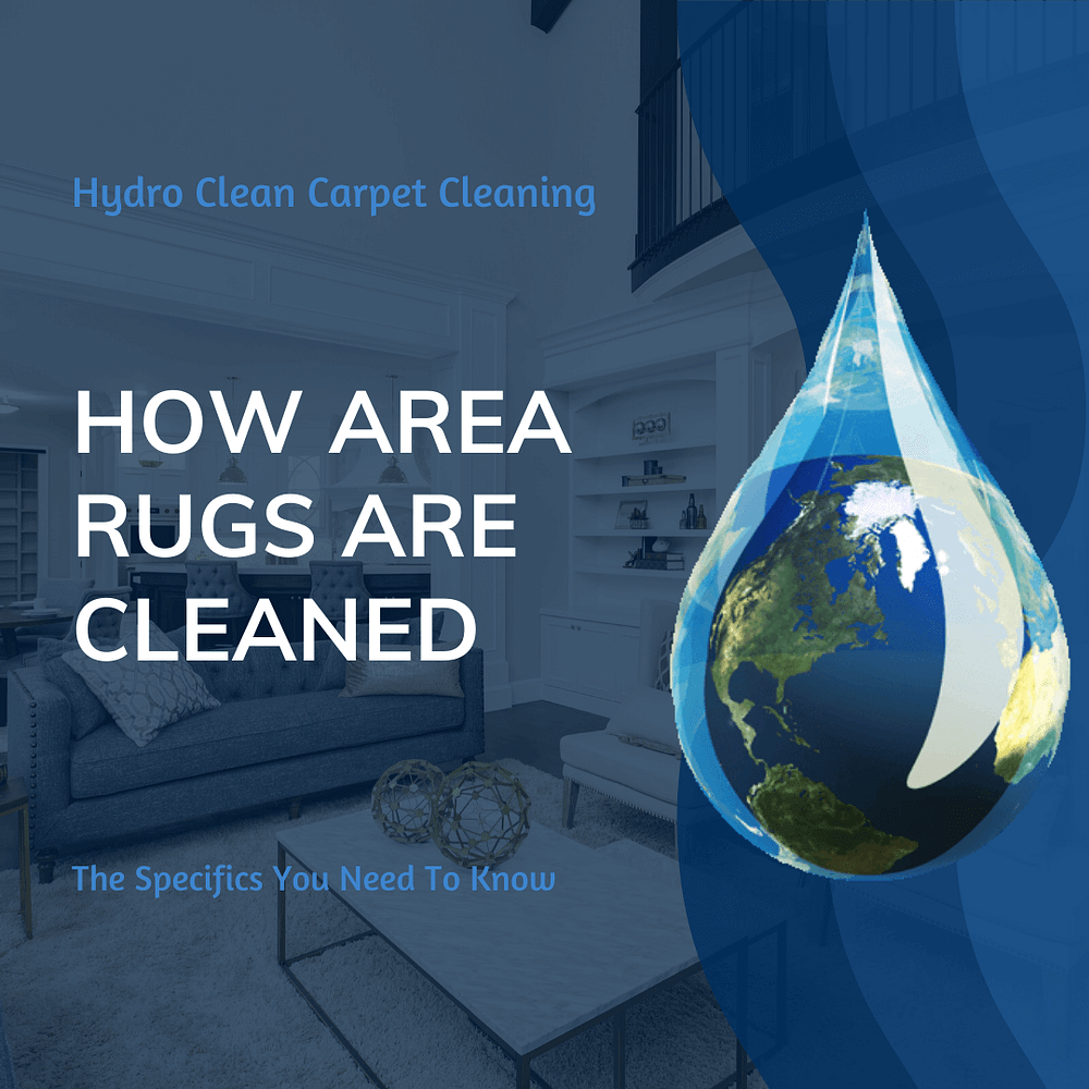 featured image how area rugs are cleaned