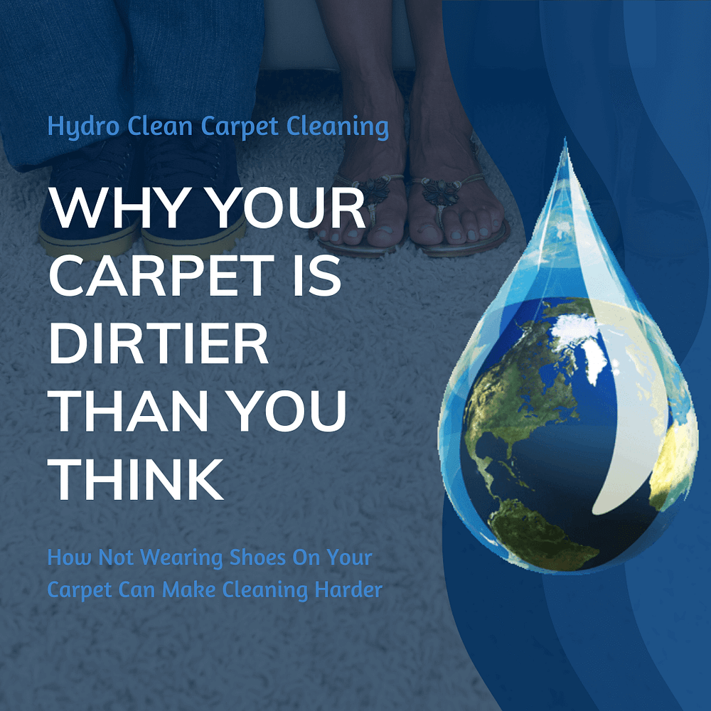 featured image why your carpet is dirtier than you think
